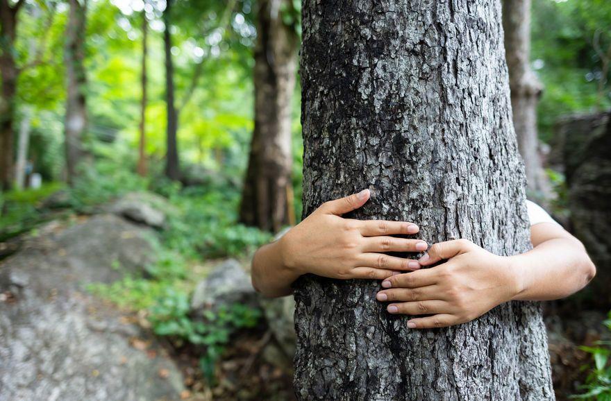 Conso : les Français sont prêts à agir pour l'environnement