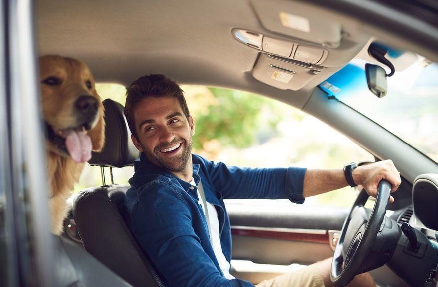 Marché automobile : un quart d'immatriculations en moins en 2020